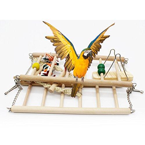 UEETEK Oiseau à suspendre en bois pour perroquets, perroquets, animaux domestiques