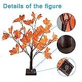 24 LEDs Ahornblatt Baum Licht, 50cm Schreibtisch Ahorn-Blätter (Herbst) Baumlicht Warmweiß,Herbst Dekoration Blätter Lichterketten für Thanksgiving, Weihnachten, Innen Deko - 8