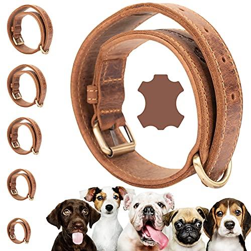 Darcis Hundehalsband Braun - S - Extrem Robustes Lederhalsband aus hochwertigem Rindsleder - Ideal für Starke Hund - Halsband Hund - Hundehalsband Leder - Lederhalsband Hund 50