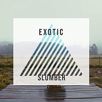 Exotic Slumber