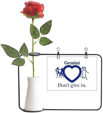 OFFbb-USA Motivation Constellation Love Gemini Artificial Rose Flower Hanging Vases Decoration Bottle