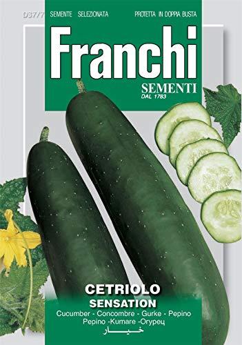 "100 metallica ARANCIO 6,5 /""X9/"" FOIL mailing affrancatura postale Sacchetti"