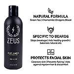 ZEUS 100% Vegan Beard Grooming Set - Vegan Formula Oil, Shampoo, and Conditioner with Natural Plant Fiber Bristle Brush… 3