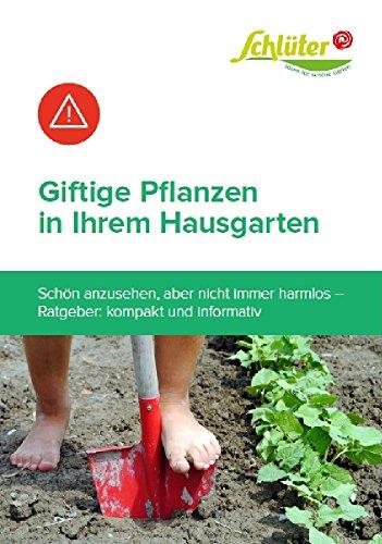 Giftige Pflanzen in Ihrem Hausgarten: Schön anzusehen, aber nicht immer harmlos – Giftige Pflanzen in Ihrem Garten