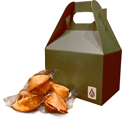 Greenfire Fortune Cookies - 20 Cookie Gift Box - Funny Kid Friendly Messages, SFW [Safe For Work], Traditional Vanilla Flavor Individually Wrapped – Kosher Certified Gourmet Gift