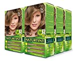 Naturtint Permanent Hair Color 7N Hazelnut Blonde (Pack of 6), Ammonia Free, Vegan, Cruelty Free, up to 100% Gray Coverage, Long Lasting Results