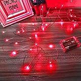 Ariceleo Led Fairy Lights Battery Operated, 1...