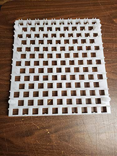 Quail Egg Trays (6 pack)