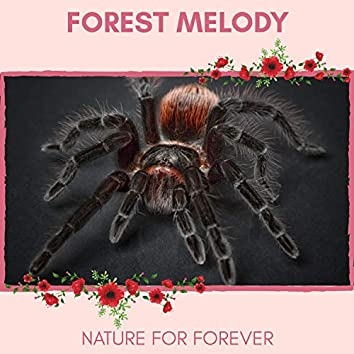 Forest Melody - Nature for Forever
