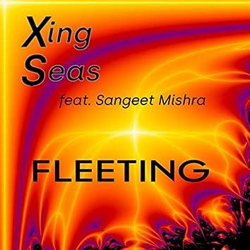 Fleeting (feat. Sangeet Mishra)