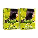 Hesh Pharma Amla Hair Powder 3.5oz, 100g (Pack of 2)