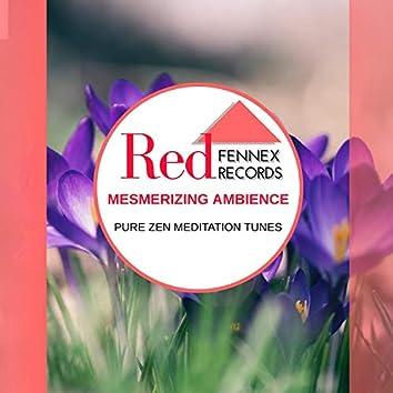 Mesmerizing Ambience - Pure Zen Meditation Tunes