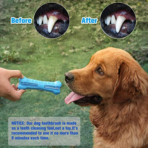 best toy to clean dogs teeth