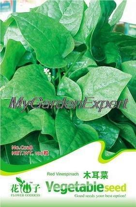 30pcs de vente Hot Malabar Épinards Graines, Santé Nutrition Légumes semences, Original emballage d'expédition Plante en pot jardin gratuit