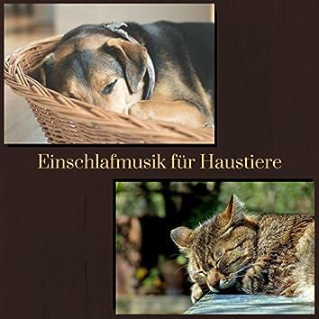 Einschlafmusik für Haustiere - 50 Entspannende Musiktherapie für Hunde und Katzen zum Schlafen