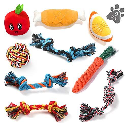 ASANMU Welpenspielzeug Set, 9 Stück Hundespielzeug Welpen Hunde Kauspielzeug Baumwollknoten Spielset Seil Interaktives Hunde Spielzeug Set für Kleine Hunde Mittlere Hunde für Zahnreinigung Geeignet