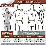 RDX Gewichthebergürtel (Schnellverschluss) - 8