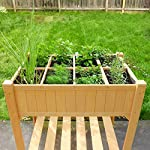 Quictent 8 Grids Raised Garden Bed 35.4''L x 23.6''W x 35.4''H Wooden Planter Kit Box with Legs for Herbs Vegetable and… 12 【8 Grids for Grow 8 Different Herbs】--- 2 installation methods, use the shelves to make 8 grids to grow different vegetables or herbs, or disassemble shelves to make a whole garden box to grow more. Give you more convenience to use it. 【100% Natural Wood Material,Weight Capacity:440lbs】--- This raised garden bed is made of non-paint natural cedar wood which can resist weather-related damage, won't warp, shrink or swell in high humidity. Weight capacity: 440lbs, never worry about falling or legs broken.More than 30 inches tall,it's good for those who struggle to bend down or lean over. 【Assemble with Screws, Refuse any Crack】--- There are holes on every parts that need to be assembled,all connected by screws,which is very stable and easy to use screwdriver to assemble and refuse any crack on the wood.You can use this raised garden planter for years.