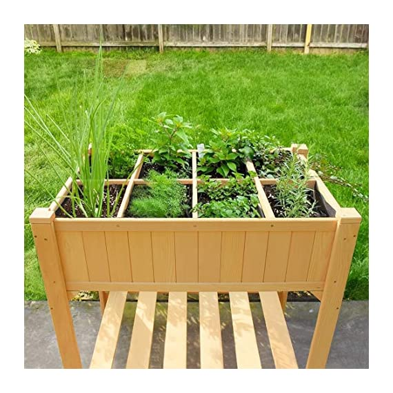 Quictent 8 Grids Raised Garden Bed 35.4''L x 23.6''W x 35.4''H Wooden Planter Kit Box with Legs for Herbs Vegetable and… 3 【8 Grids for Grow 8 Different Herbs】--- 2 installation methods, use the shelves to make 8 grids to grow different vegetables or herbs, or disassemble shelves to make a whole garden box to grow more. Give you more convenience to use it. 【100% Natural Wood Material,Weight Capacity:440lbs】--- This raised garden bed is made of non-paint natural cedar wood which can resist weather-related damage, won't warp, shrink or swell in high humidity. Weight capacity: 440lbs, never worry about falling or legs broken.More than 30 inches tall,it's good for those who struggle to bend down or lean over. 【Assemble with Screws, Refuse any Crack】--- There are holes on every parts that need to be assembled,all connected by screws,which is very stable and easy to use screwdriver to assemble and refuse any crack on the wood.You can use this raised garden planter for years.