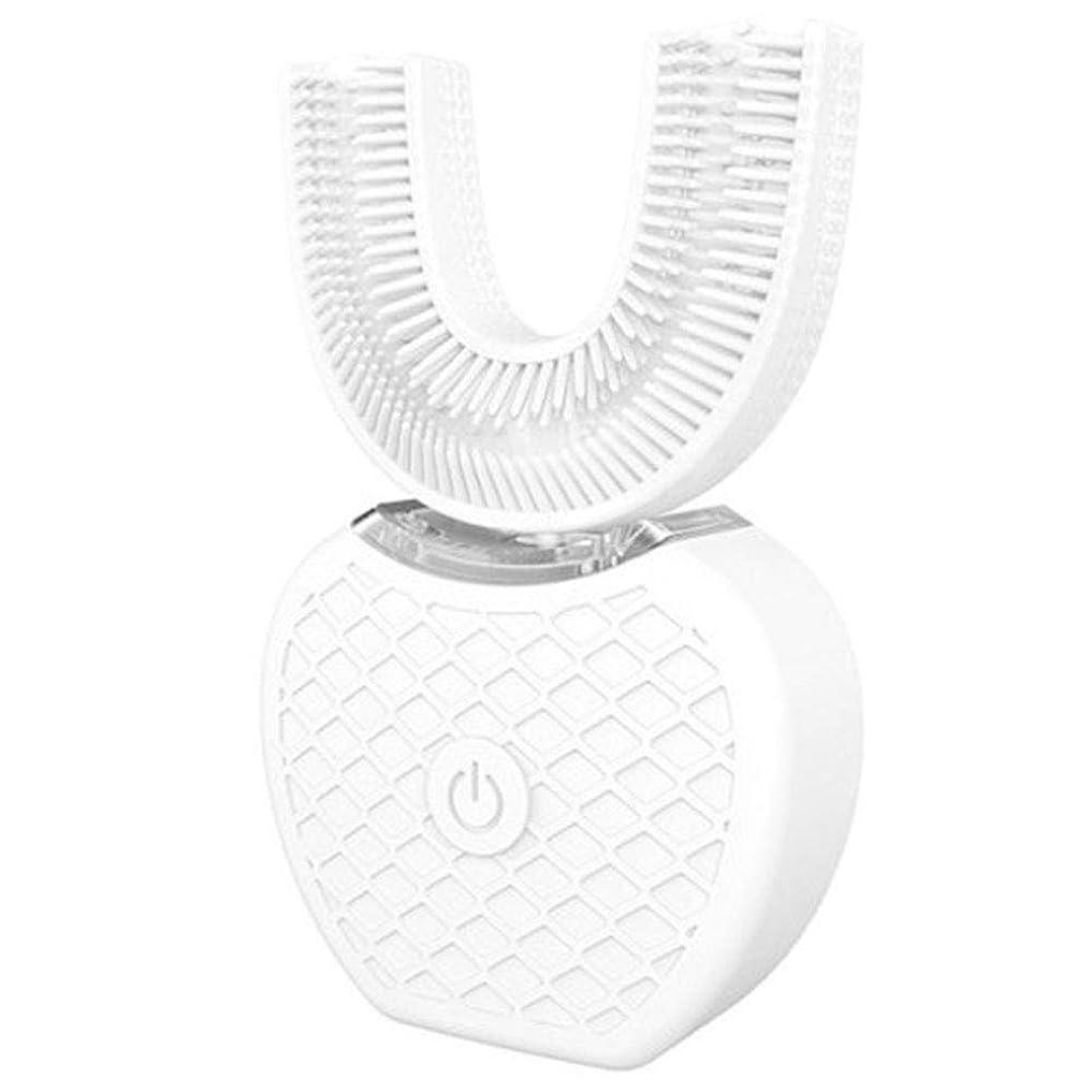 口腔洗浄器 デンタルケア 電動歯ブラシ 超音波自動歯ブラシ USB充電 U型 360°全方位 四つモード 口内ケア 携帯 歯磨き デンタルケア 防水 黒 白 青 ピンクABS 充電ベース USBケーブル付き 7*6.5cm
