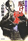 駆ける稲妻: 人情同心 神鳴り源蔵 (光文社時代小説文庫)