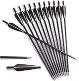 DZGN Crossbow Pernos de Carbono Flechas 16 18 20 22 Targets Caza Pulgadas Práctica Ballesta Flechas con Puntas de paletas y reemplazable 4 Pulgadas,16 Inch