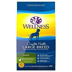 Best Large Breed Dog Food - Von Welpen zu Senioren