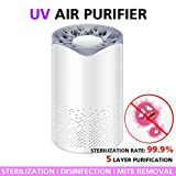 Mini Air Purifier Cleaner with HEPA Filters Night Light UV Air Sanitizer for Home Bedroom Office Car