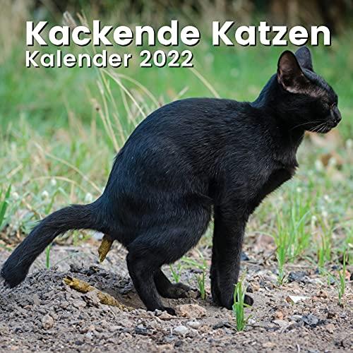 Kackende Katzen Kalender 2022: Katzenliebhaber Geschenke Lustig   Katzengeschenke für Männer Madchen Menschen Erwachsene Frauen Kinder Teenager Freund Mitarbeiter Geburtstag Weihnachten