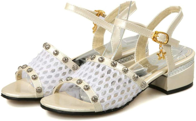 MEIZOKEN Womens Breathable Mesh Sandals Fashion Metal Decor Open Toe shoes Ankle Strap Low Chunky Sandal