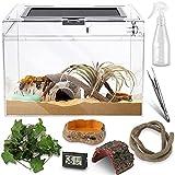 Reptile PC Glass Terrarium - Amphibians Tank...