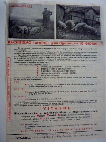 Stampati Pubblicitari 'VITASOL Ricostituente, Antirachitico, Multivitaminico - VITASOL S.r.l. Brescia'