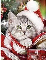 数字でDiyペイント子供用デジタルアダルトペインティングブラシ、数字とアクリル絵の具、セーターの子猫を飾るための壁のアート写真に使用