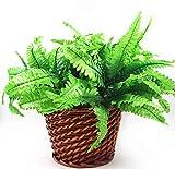 3 x Helecho de Hierba Persa Artificial, Hoja de simulación Verde Falsas arbusto de follaje, 7 Ramas Plantas Falsas para Boda en el hogar decoración de jardín al Aire Libre