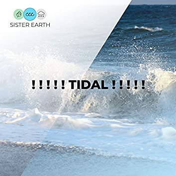 ! ! ! ! ! Tidal ! ! ! ! !