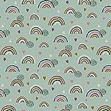 Bio Jersey Stoff Meterware ab 50cm Regenbogen (mint)