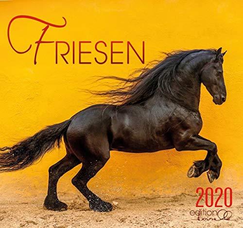 Friesen 2020