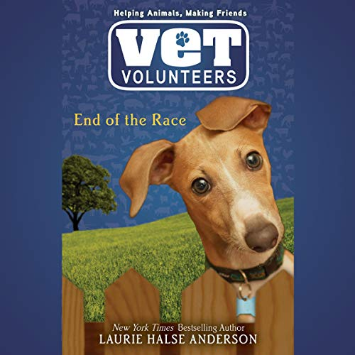 End of the Race audiobook cover art