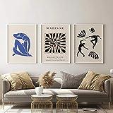 HNZKly Living Room Wall Decor Matisse Art Posters Prints Modern Abstract Matisse Pintura Minimalist Wall Art Living Room Home Decor 3 Set 40x50cmx3 / Unframed Art