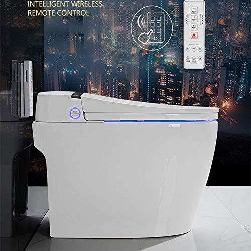 ZJZ Einteilige Toilette Bidet Funktionalität Keramik Sitzheizung LED LCD-Bildschirm Aktivkohlefiltration Automatisch
