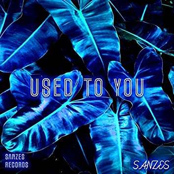 Used To You