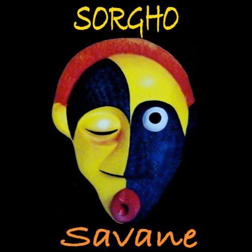 Sorgho