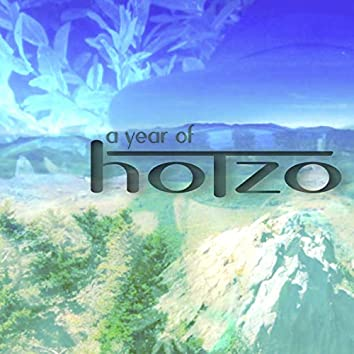 A Year of Hotzo