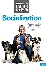 Best cesar millan socialization Reviews