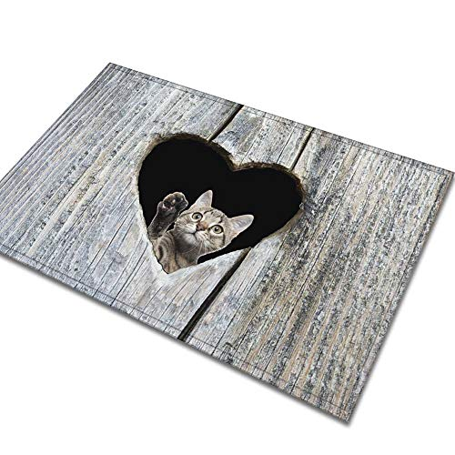 Tapis Bébé Velours Animal De Compagnie Mignon Chat Chien Carpette Vêtements de Fiesta Natte De Sol Salle De Bains Salle De Séjour Tablette D'Entrée Amoureuse En Forme De Cœur