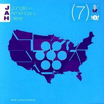 J.A.H. Is The Jungle Sky  Vol. 7