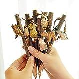 Gwill - Bolígrafo de punta de bola de 0,5 mm, diseño de animales de madera, ideal como regalo para niños y amigos, con líneas suaves, viene con un bonito cordón de estilo de animal al azar