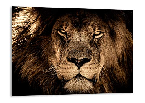 Tangerine Wall | Cuadro de león para decoración de salón Moderno | Tamaño: 120x80 cm | Cuadros Grandes y rígidos de Animales para apoyar o Colgar sin Agujeros