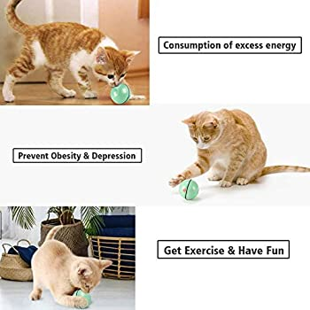 EasyULT Rechargeable Interactif Balle pour Chat, Balle Interactive de Jouets de Chat, Rotative Automatique à 360 Degrés avec Lumière LED, Animaux de Compagnie Chats Chiens Chaser Ball(Vert)