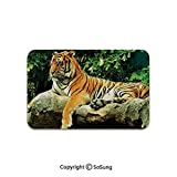 Tiger Area Rug,Resting Feline in The Forest on a Large Rock Sublime Carnivore Beast Beautiful Nature,for Living Room Bedroom Dining Room,6'x 3',Multicolor